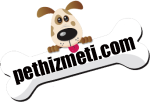 Pethizmeti.com